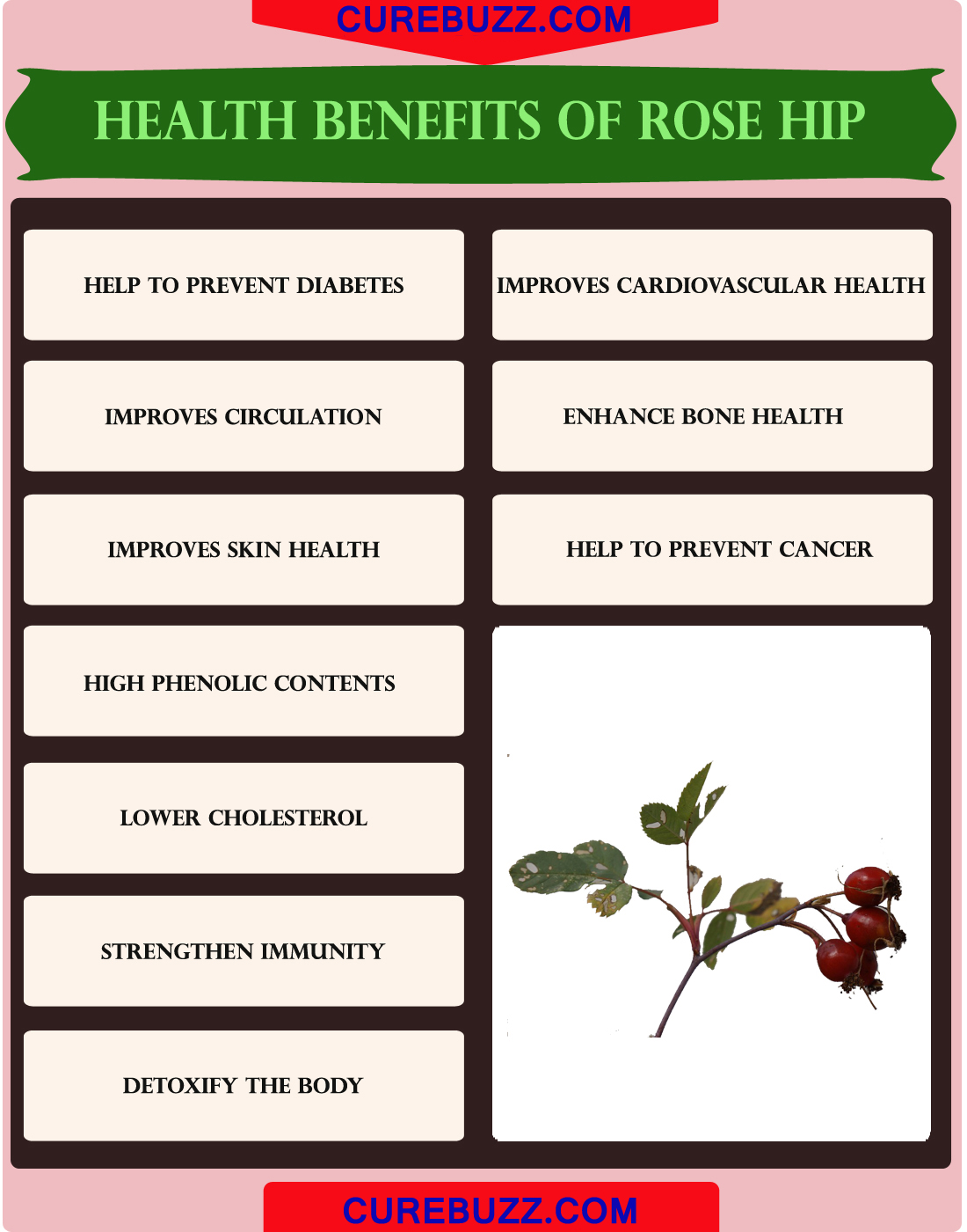 Health Benefits of Rose hip