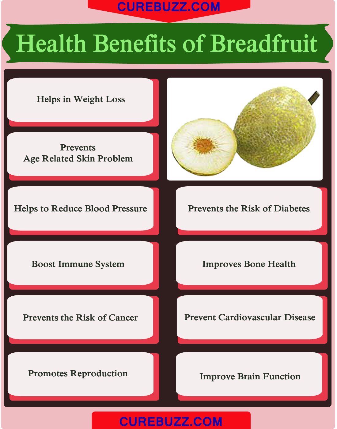 10 health benefits of breadfruit : curebuzz