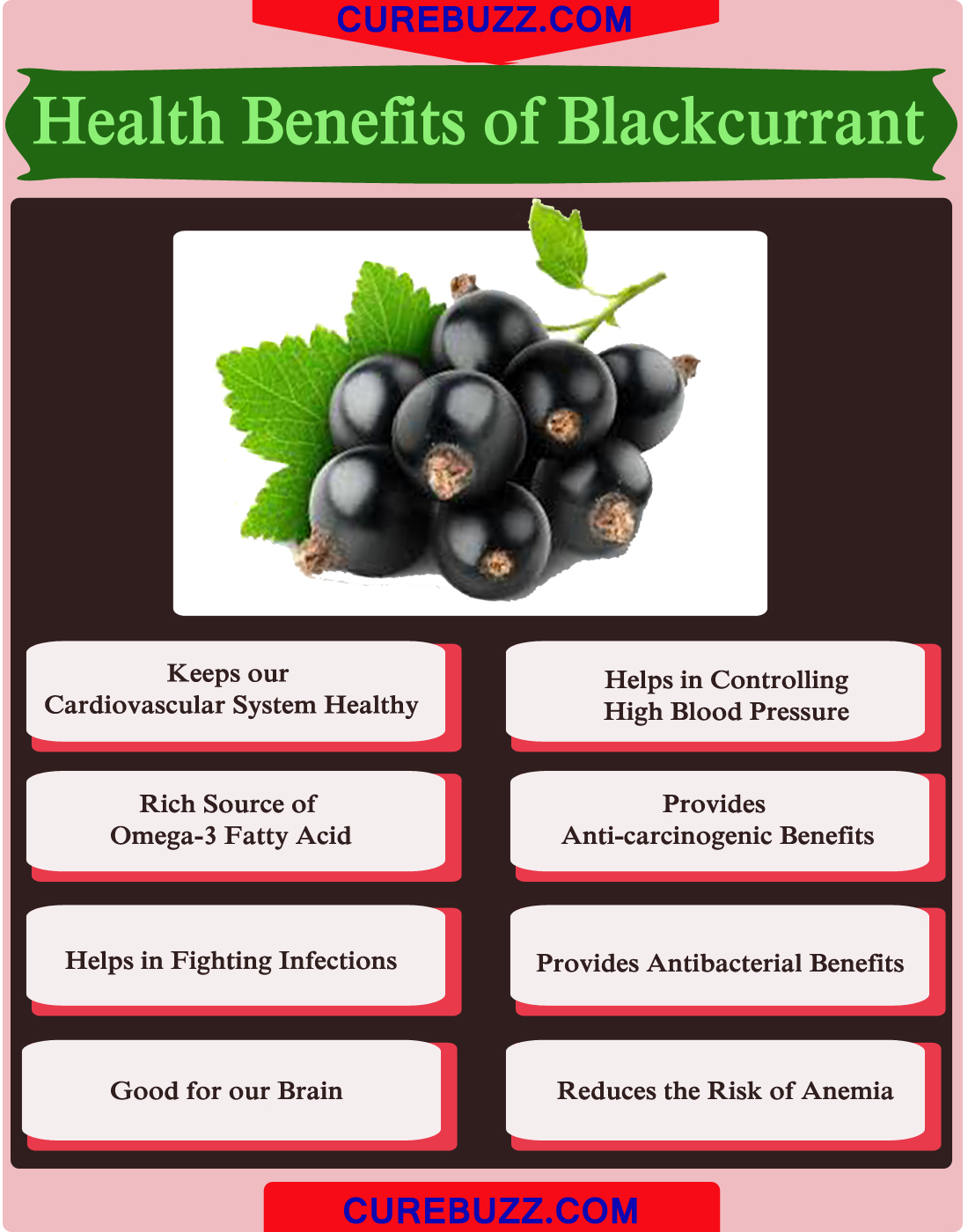 Health Benefits of Blackcurrant