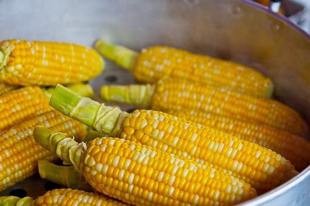 corn high in fiber