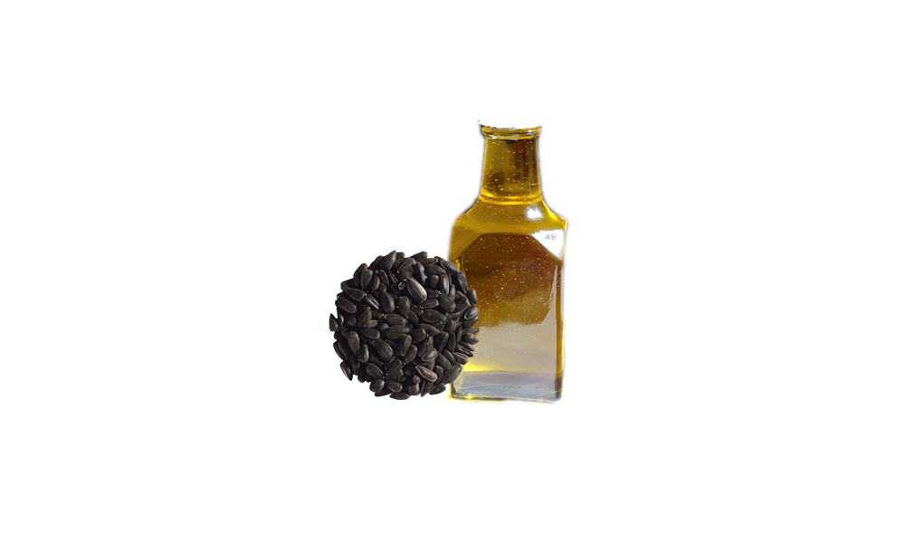11 Health Benefits of Black Seed Oil : CUREBUZZ