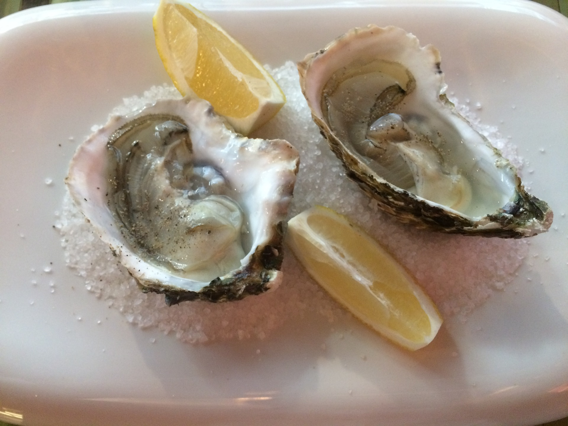 oysters rich in iron
