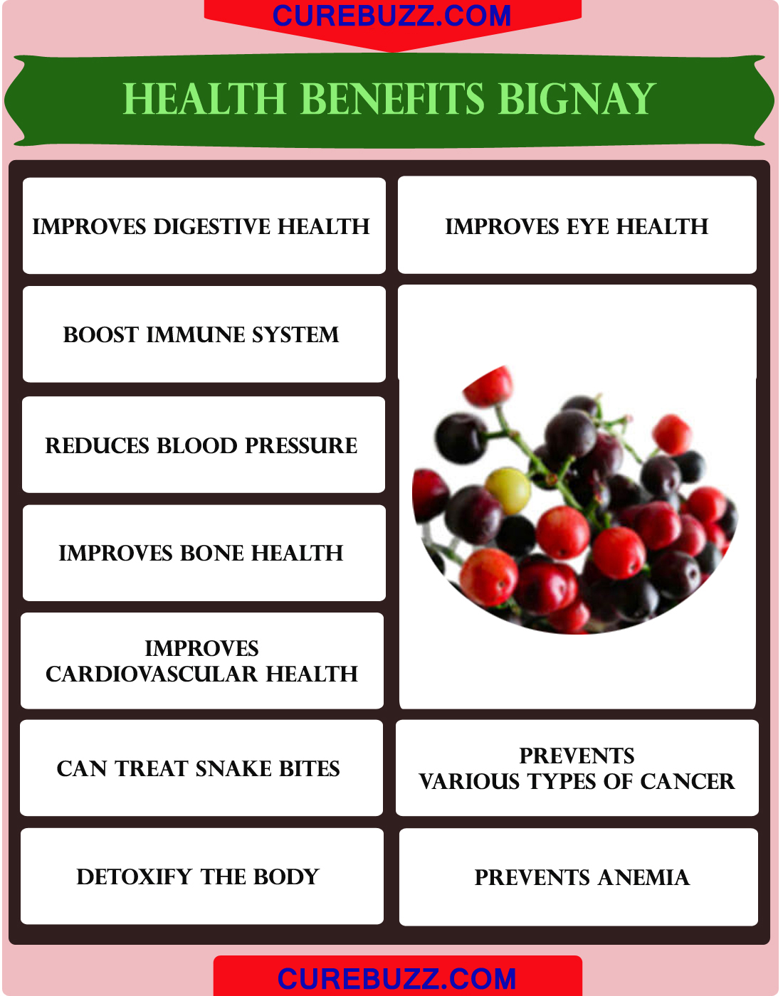 Health Benefits of Bignay