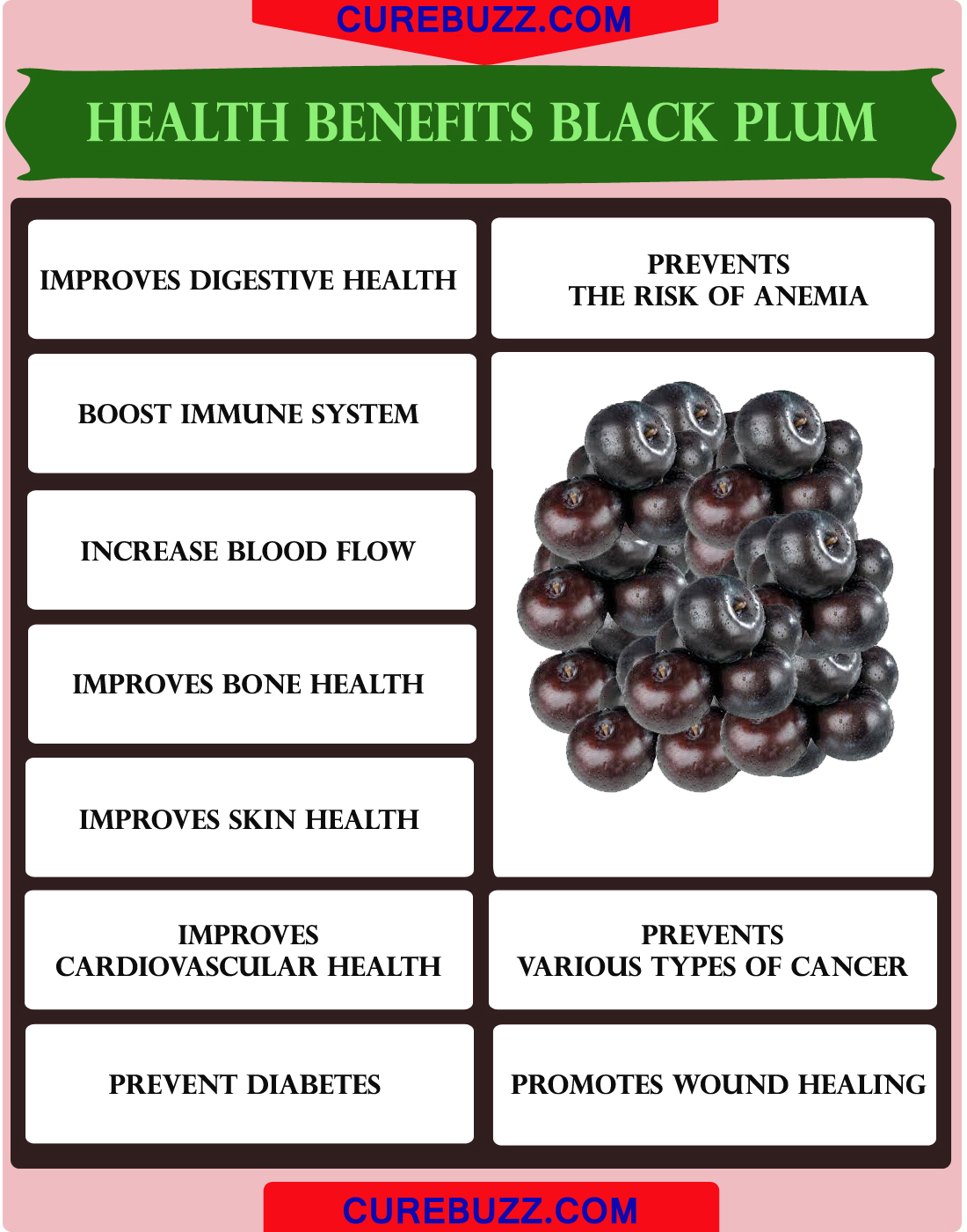 Health Benefits of Black Plum