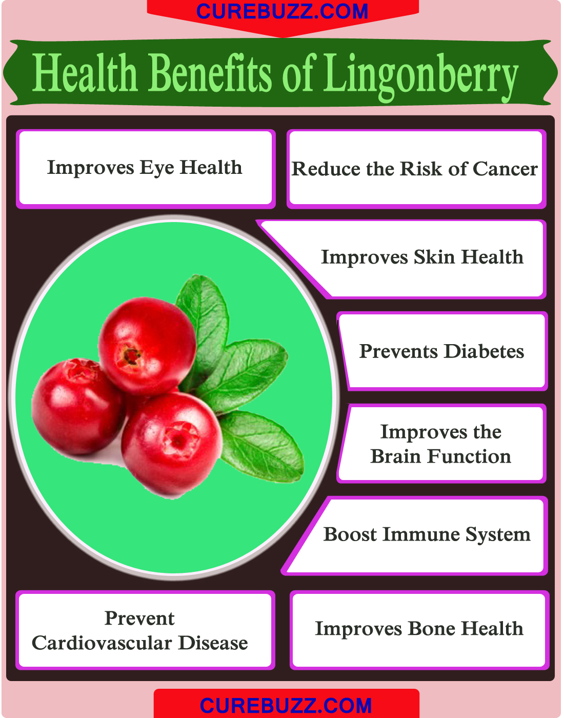 Health Benefits of Lingonberry