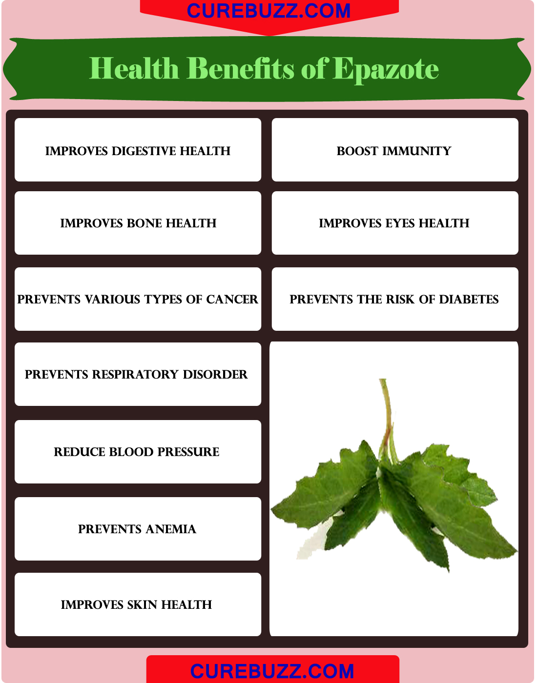 Health Benefits of Epazote